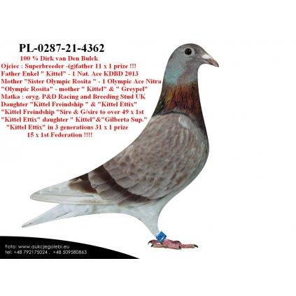 PL-0287-21-4362 Super inbred