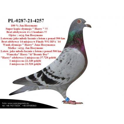 PL-0287-21-4257 Super kopia
