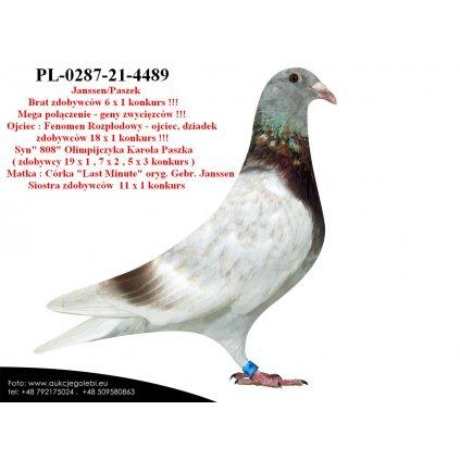 PL-0287-21-4489 Super linia Janssen / Paszek !!!